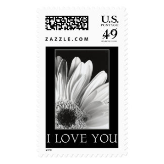 I Love You - Gerber Daisy Postage Stamp