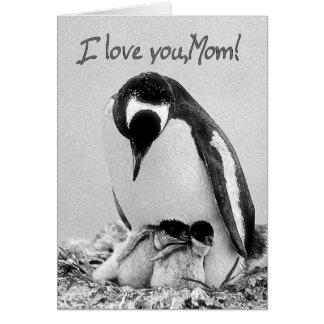 I love you,Mom Card