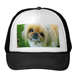 I love you mom pekingese dog trucker hat