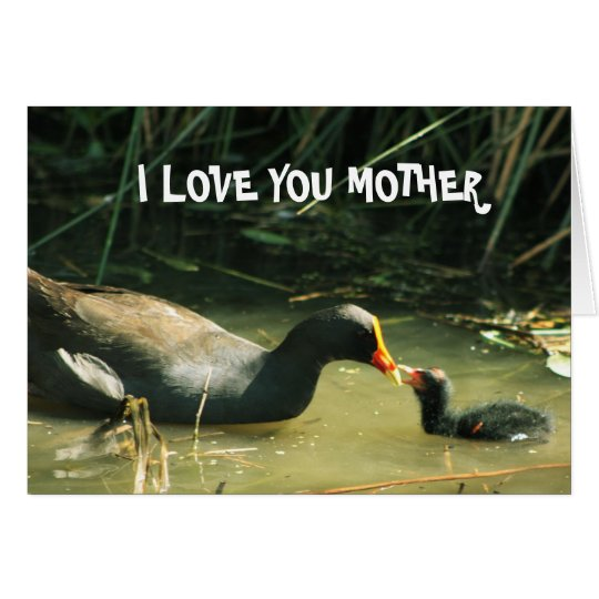 I Love You Mother Cute Mother And Child Card
