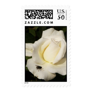 I Love You_ Postage_by Elenne Boothe Postage