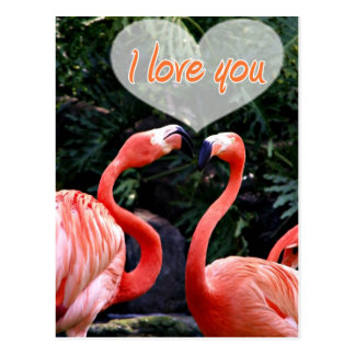 I Love You_ Post Card
