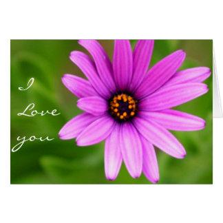 I Love You Purple Daisy greeting card