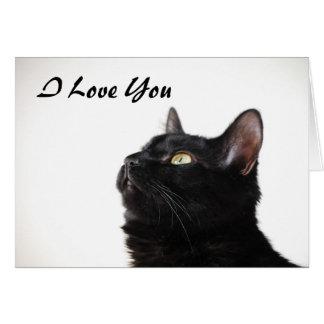 I Love You Pussycat Card