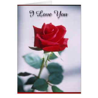 I Love You Red Rose Card-Blank Card