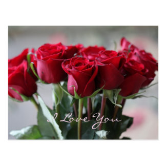 I Love You Red Roses Postcard
