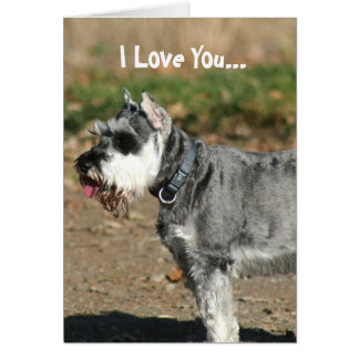 I Love You Schnauzer dog greeting card