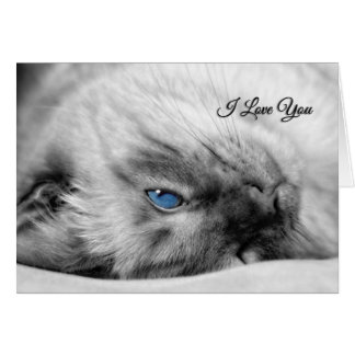 I Love You Siamese Cat with Blue Eyes Card