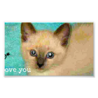 I love you siamese kitten photo print