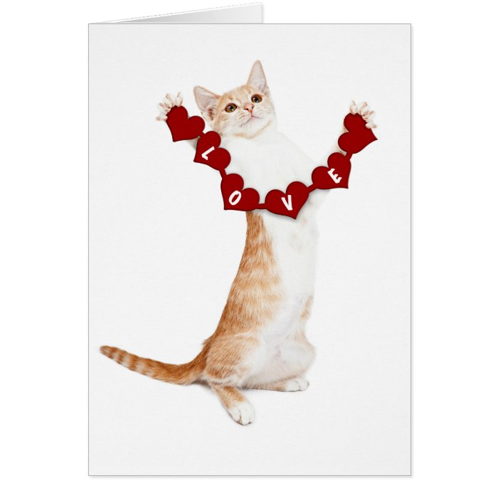 I Love You This Much card with kitten | Zazzle
