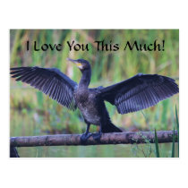 I Love You This Much - Cormorant Postcard