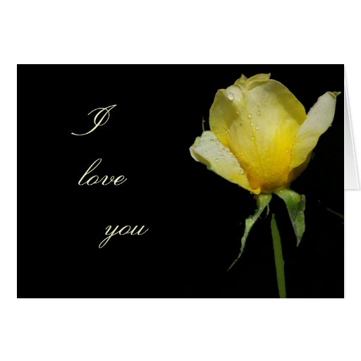 I love you yellow rose greeting card | Zazzle
