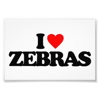 I LOVE ZEBRAS PHOTO