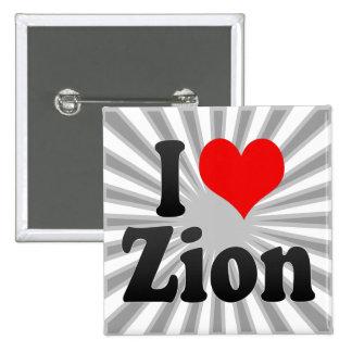 I Love Zion, United States Pins