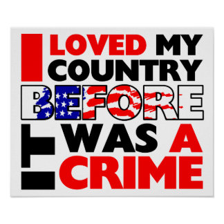 I Loved My Country Before It Was A Crime! Poster