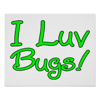 I Luv Bugs Poster