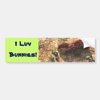 I LUV BUNNIES! Cute Car Bumper Sticker