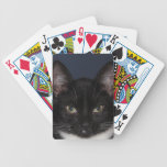 I LUV CATZ BICYCLE PLAYING CARDS