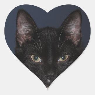 I LUV CATZ HEART STICKER