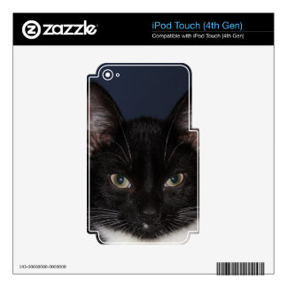 I LUV CATZ iPod TOUCH 4G DECAL