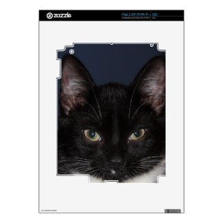 I LUV CATZ DECAL FOR iPad 2