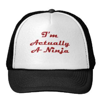 I m Actually A Ninja Mesh Hat