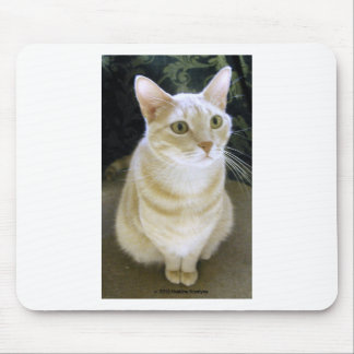 """I""""M BLUE WITHOUT YOU! MOUSE PAD"""