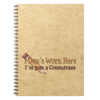 I´m Just a Consultant Notebook