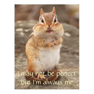 I m Not Perfect Chipmunk Quote Postcard