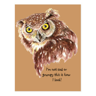 I m not sad or grumpy this is how I look Owl Post Cards