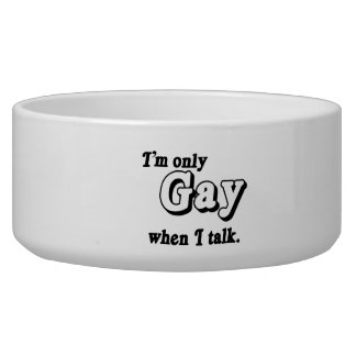 I m only gay when I talk png Dog Bowls