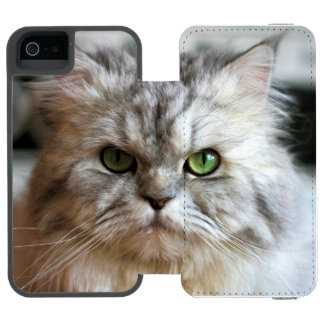I'm So Serious Today! Wallet Case For iPhone SE/5/5s