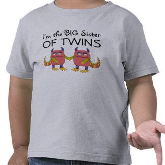 I m the Big Sister of Twins Tee Shirt