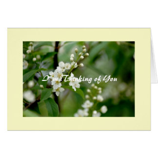 I`m Thinking of You Card