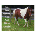 I may look sane but, I am paint horse carzy! Print