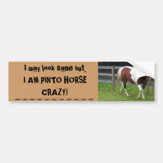 I may look sane, but I AM PINTO HORSE CRAZY! Bumper Stickers