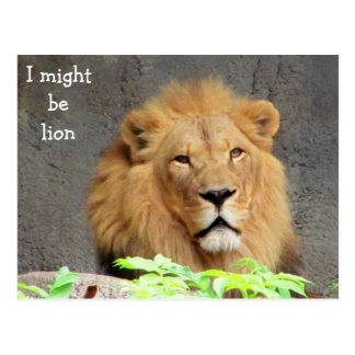 I Might Be Lion Postcard