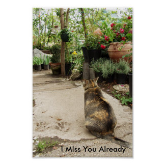 I Miss You Cat Poster