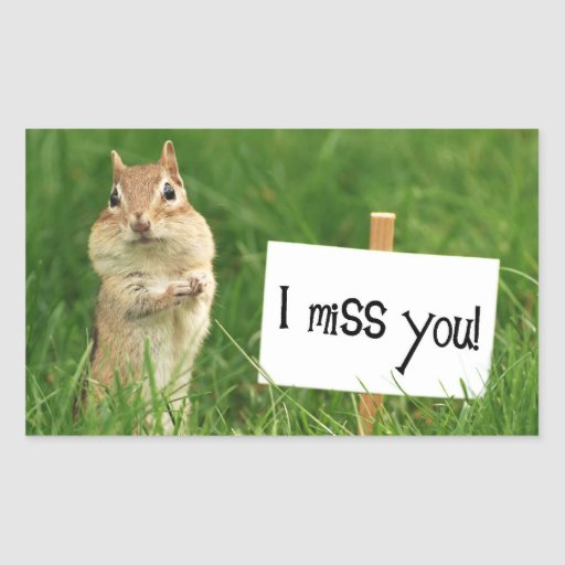 I Miss You Chipmunk with Sign Rectangular Stickers