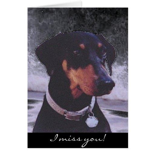 I miss you!  doberman card