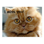 I miss you! post card
