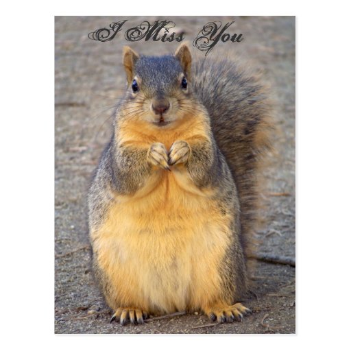 I Miss You_ Postcard_by Elenne Boothe Post Card