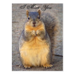 I Miss You_ Postcard_by Elenne Boothe Postcard