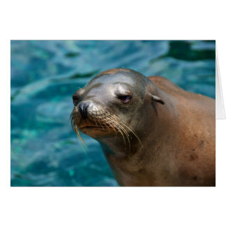 I Miss You -  Seal Greeting Card