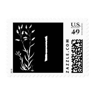 I monograma (planta negra de la lavanda) envio
