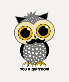 I mustache you a question owl T-Shirt