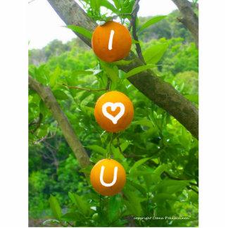 I naranjas del corazón U Fotoescultura Vertical