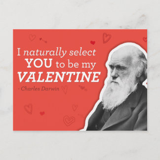 I Naturally Select You To Be My Valentine - Darwin Holiday Postcard