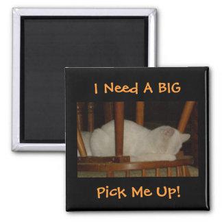 I Need A BIG, Pick Me Up!-Cat Design-Magnet 2 Inch Square Magnet