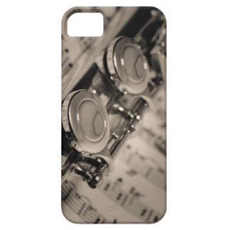 I need a muse... iPhone 5 cases